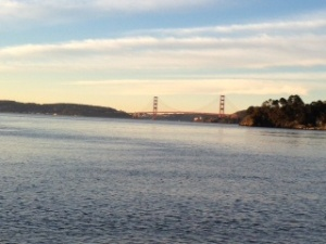 SF 2012