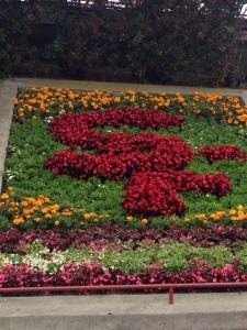flowers GGB