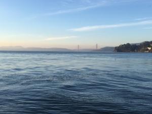 SF Winter