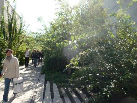 Highline-1